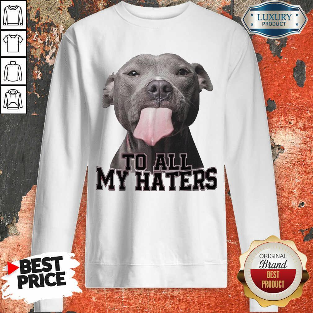 Happy Pitbull To All My Haters Sweatshirt