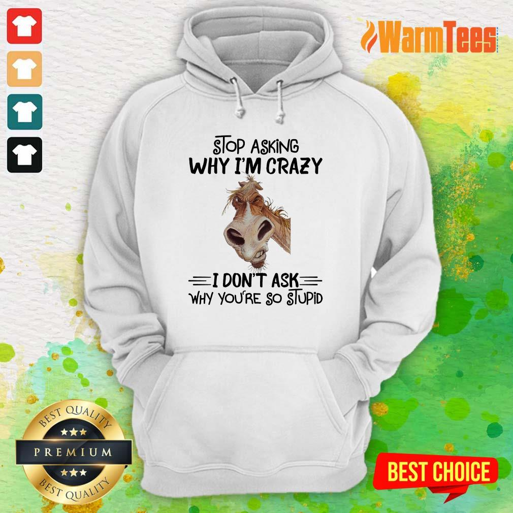 Stop Asking Why I'm Crazy Horse Hoodie