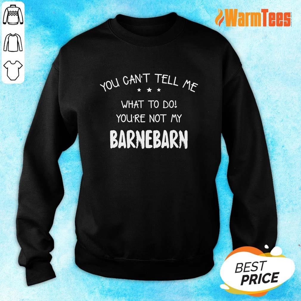 You Can't Tell Me Barnebarn Sweater