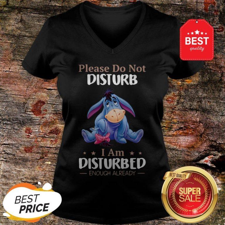 Nice Eeyore Please Do Not Disturb I Am Disturbed Enough Already V-neck