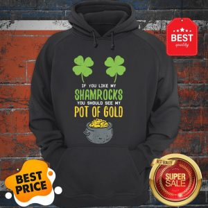 Adult Women St Patricks Day Shirt Irish Girls Naughty Sexy Hoodie