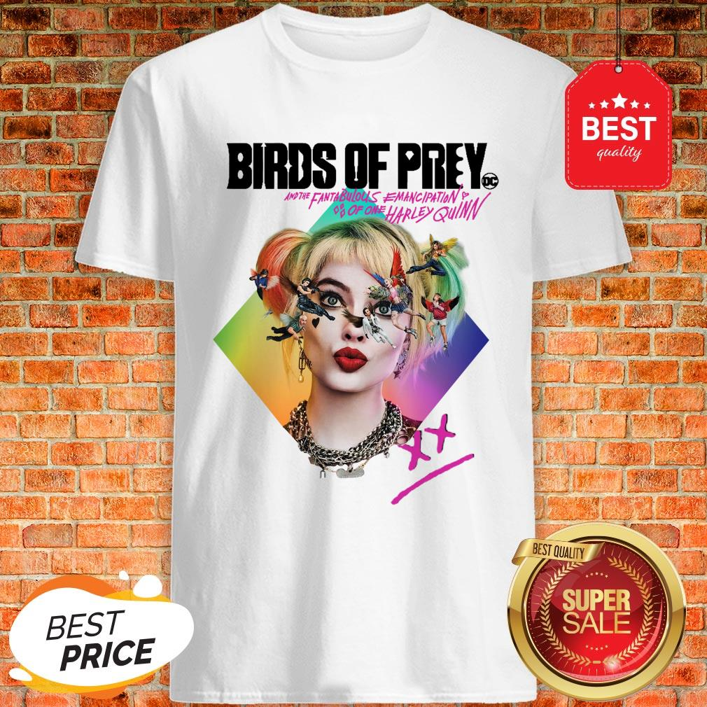 Birds Of Prey DC And The Fantabulous Emancipation Of One Harley Quinn Shirt