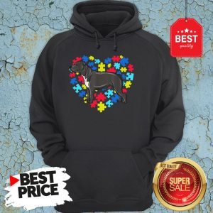 Autism Awareness Staffordshire Bull Terrier Dog Heart Gift Hoodie