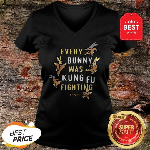 Nice Every Bunny Was Kung Fu Fighting Heyah V-neck