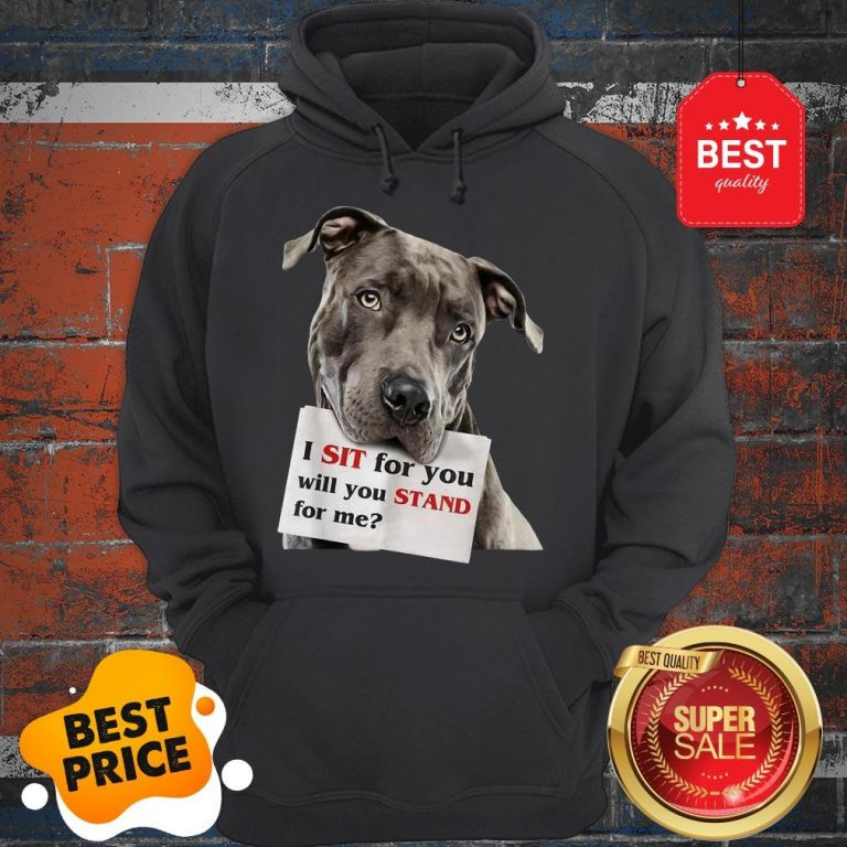 Official I Sit For You Will You Stand For Me Pitbull Dog Lovers Hoodie