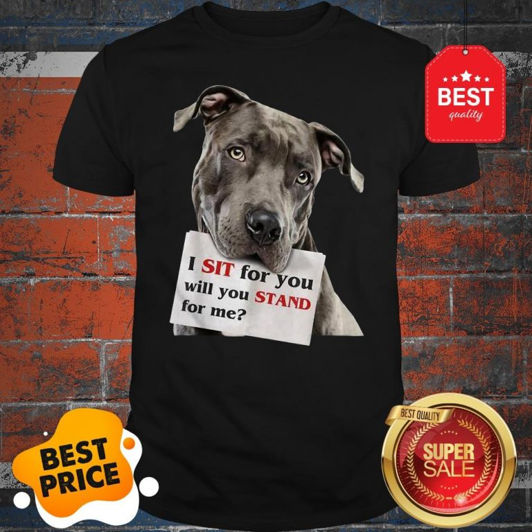 Official I Sit For You Will You Stand For Me Pitbull Dog Lovers Shirt