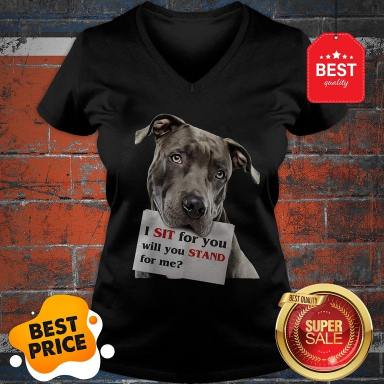 Official I Sit For You Will You Stand For Me Pitbull Dog Lovers V-neck