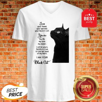 Official I'm Your Friend Your Partner Your Black Cat V-neck