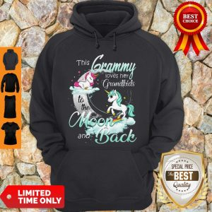 Official The Grammy Loves Her Grandkids To The Moon And Back Hoodie