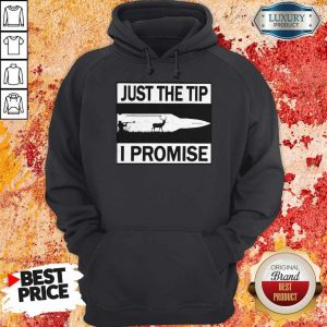 Perfect Just The Tip I Promise Hoodie