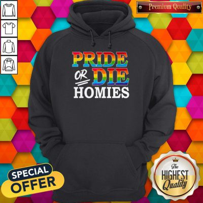 Premium LGBT Pride Or Die Homies Hoodie