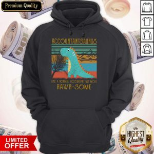 Baby T-rex Dinosaur Accountant Saurus Like A Normal Accountant But More Rwar Some Vintage Hoodie
