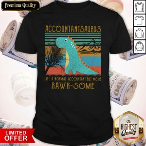 Baby T-rex Dinosaur Accountant Saurus Like A Normal Accountant But More Rwar Some Vintage Shirt
