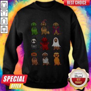 Nice Dachshunds Halloween Sweatshirt