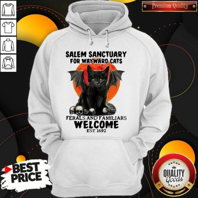 Nice Salem Sanctuary For Wayward Cats Ferals And Familiars Welcome Est 1692 Blood Moon Hoodie