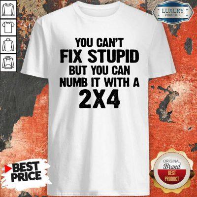 Original You Can't Fix Stupid Shirt
