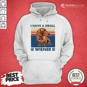 I Have A Small Wiener Dachshund Vintage Hoodie - Desisn By Warmtees.com