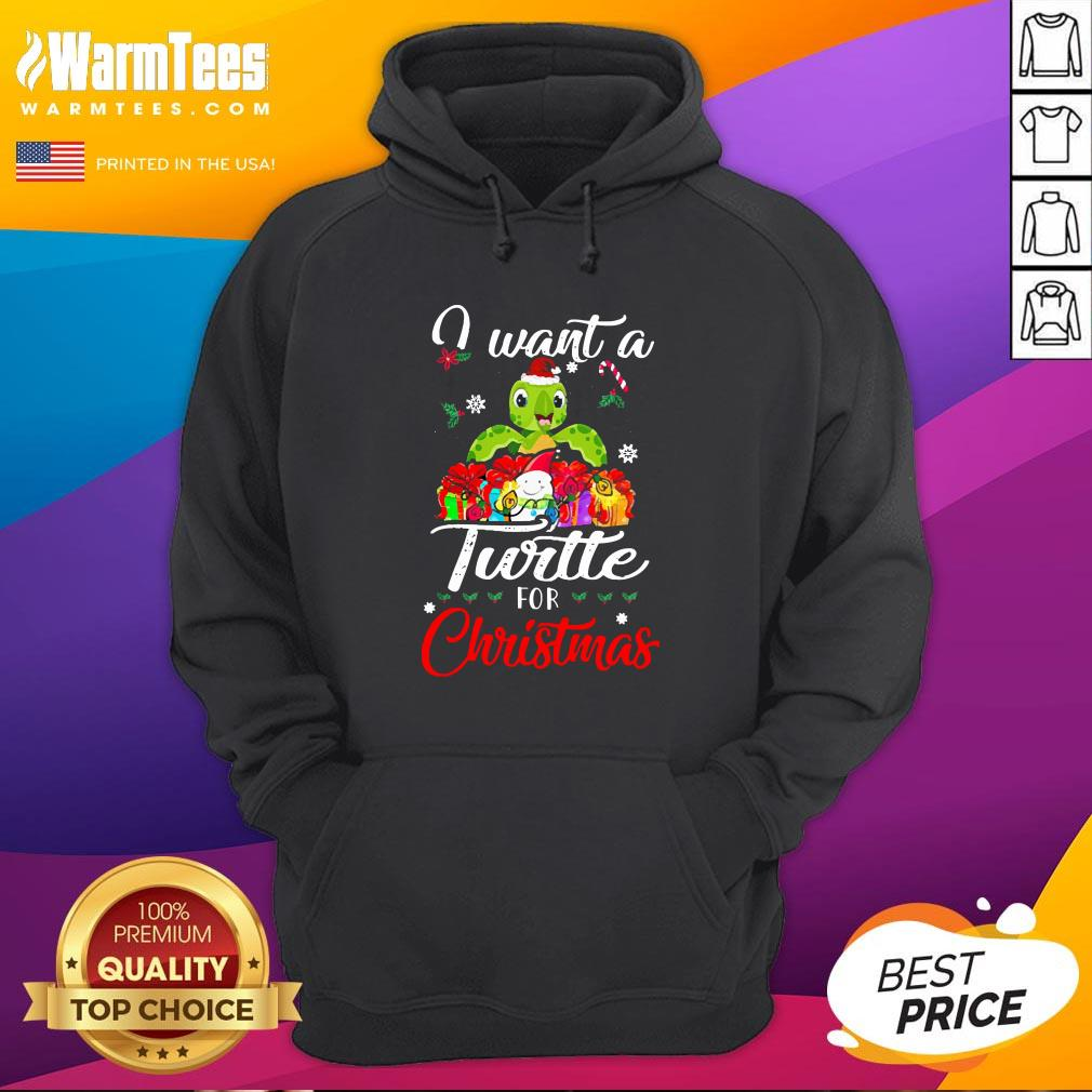 Pretty I Want A Turtle For Christmas Hoodie - Design By Thelasttees.com