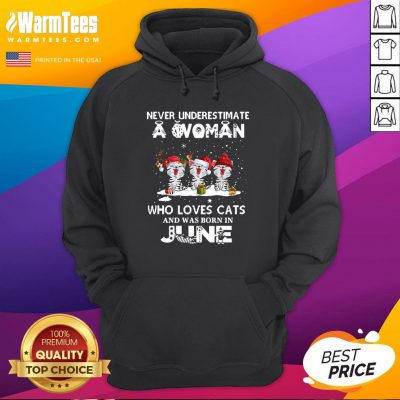 Top Never Underestimate A Woman Who Loves Cats Santa And Was Born In June Hoodie - Design By Warmtees.com
