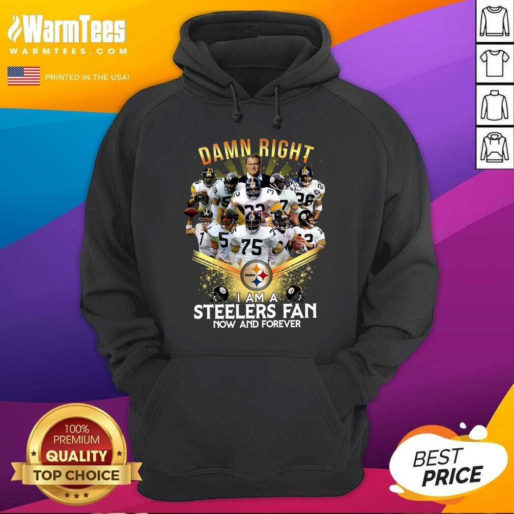 2020 Damn Right I Am A Steelers Fan Now And Forever Hoodie  - Design By Warmtees.com