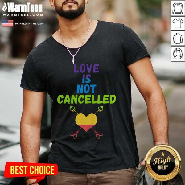 Love Is Not Cancelled V-neck - Design By Warmtees.com
