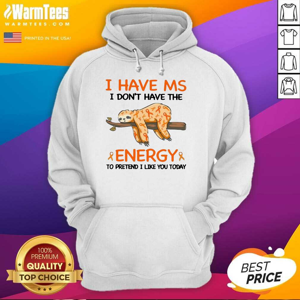 Sloth I Have Ms I Don't Have The Energy To Pretend I Like You Today Hoodie