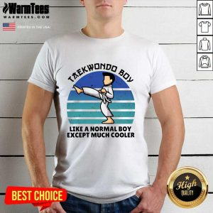 Vintage Taekwondo Boy Like A Normal Boy Except Much Cooler Shirt - Design By Warmtees.com