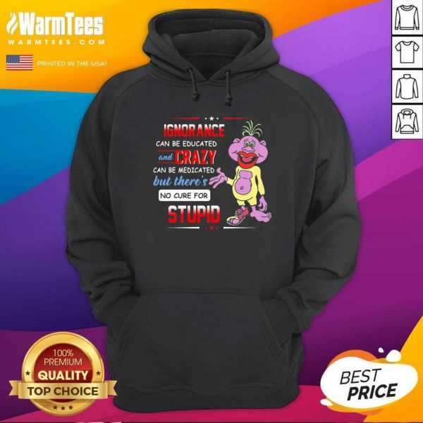 Ignorance Can Be Educated And Crazy Can Be Medicated But There's No Cure For Stupid Hoodie
