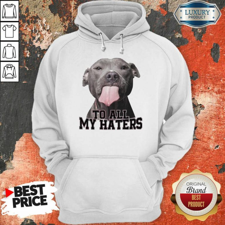 Happy Pitbull To All My Haters Hoodie