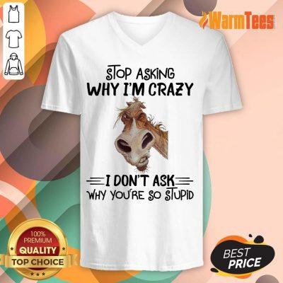 Stop Asking Why I'm Crazy Horse V-neck